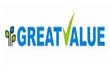 Great Value Projects India Ltd